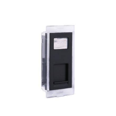 DS3 - Data faceplate RJ45, for RH1 Housing - Black finishing